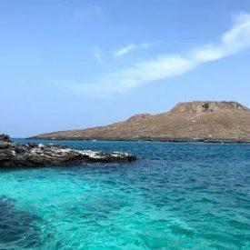 3 REASONS THAT MAKE GALAPAGOS A DREAM DESTINATION 1 - Ecuador & Galapagos Tours