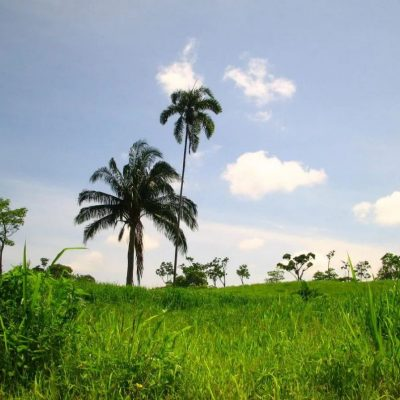 A GUIDE TO ECUADOR'S WEATHER AND CLIMATE 4 - Ecuador & Galapagos Tours