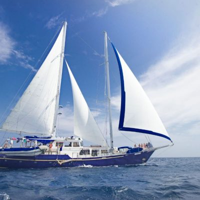 BEAGLE 1 - Ecuador & Galapagos Tours