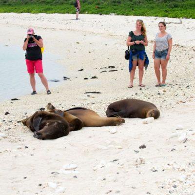 BEAGLE 4 - Ecuador & Galapagos Tours