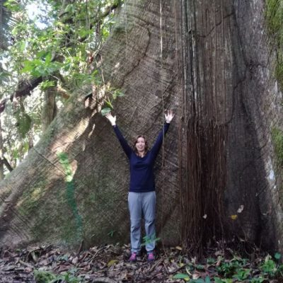 CUYABENO JUNGLE TOUR Surroundings - Giant tree - Ecuador & Galapagos Tours