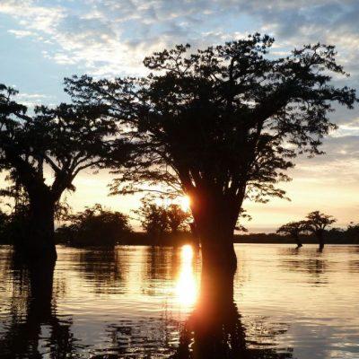 CUYABENO JUNGLE TOUR Surroundings - Laguna Grande sunset 3 - Ecuador & Galapagos Tours