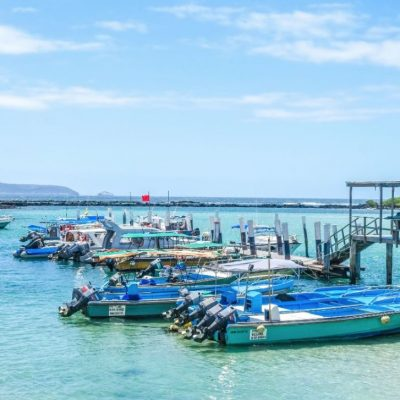 GALAPAGOS ISLAND HOPPING Town - Isabela Port - Ecuador & Galapagos Tours