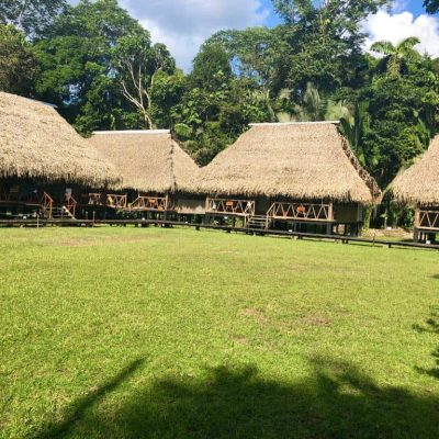 MY JUNGLE TRIP TO CUYABENO 8 - Ecuador & Galapagos Tours