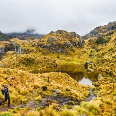 ROUND TRIP 48 - Ecuador & Galapagos Tours