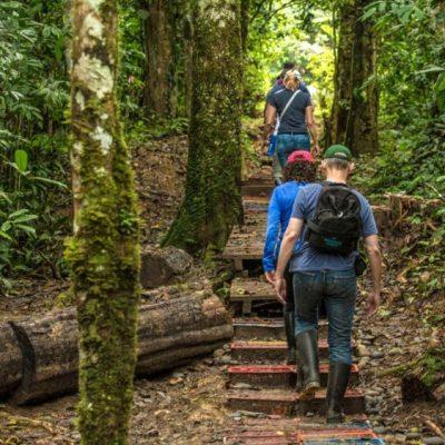 YASUNI JUNGLE TOUR 13 - Ecuador & Galapagos Tours