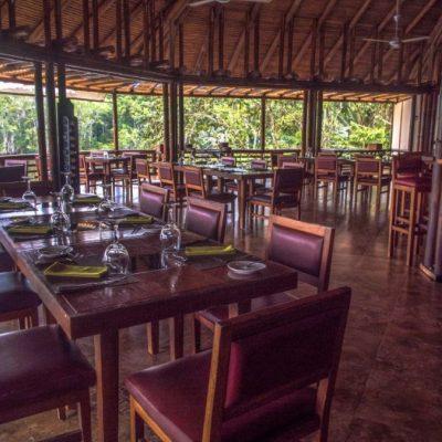 YASUNI JUNGLE TOUR 17 - Ecuador & Galapagos Tours